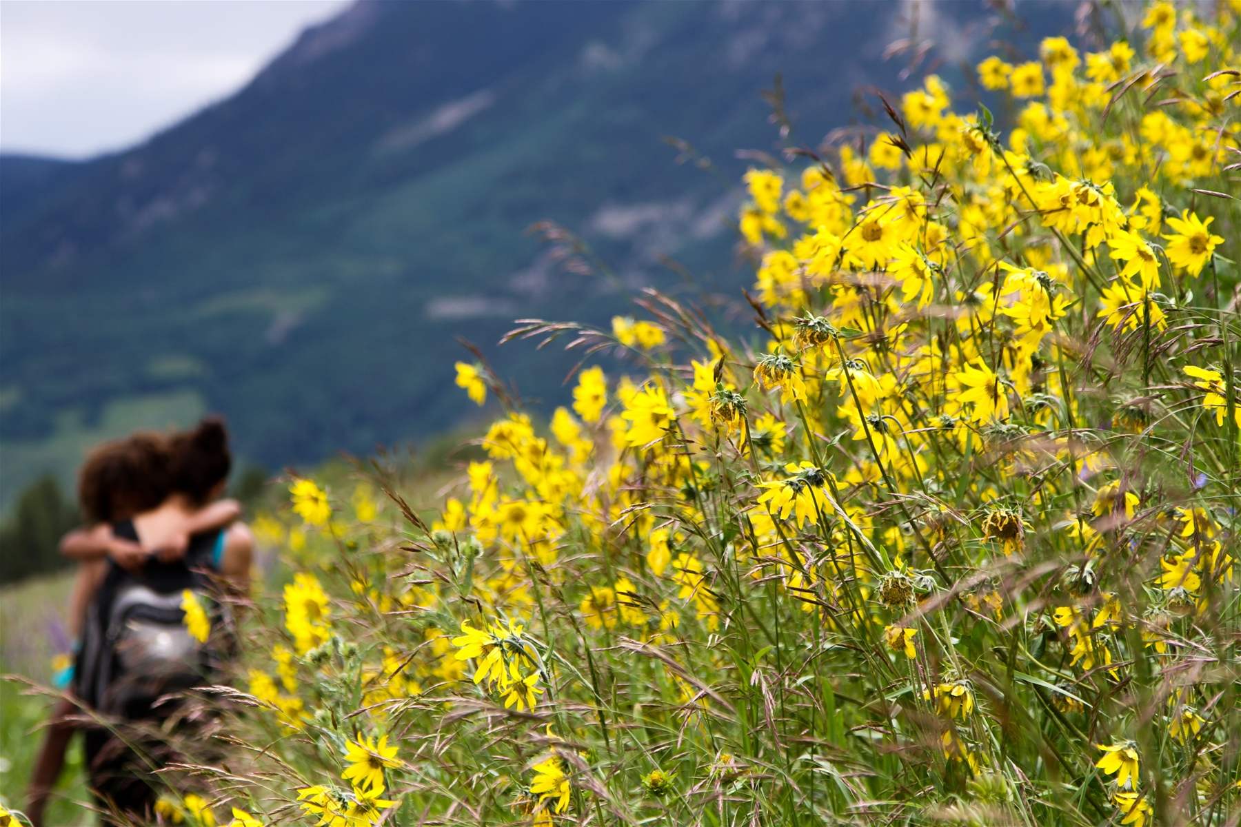 top hikes in crested butte colorado
